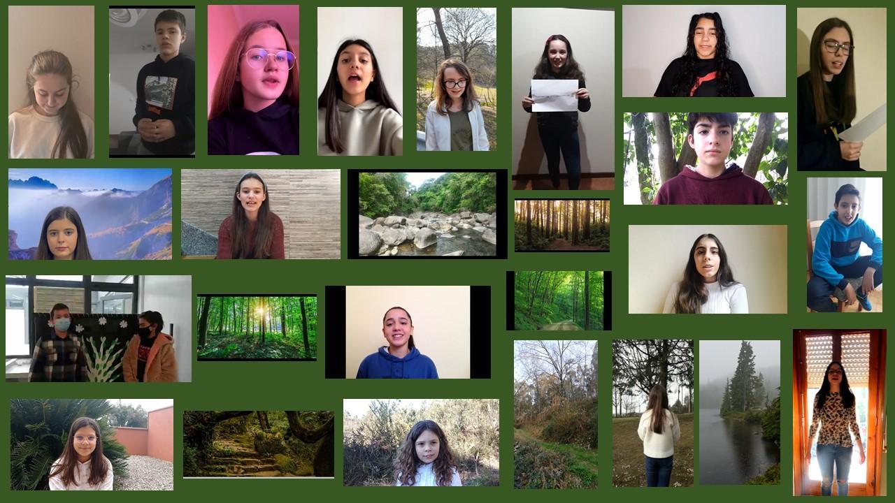 Comemoração do Dia Internacional da Floresta